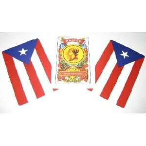Puerto Rico Flag Spanish Playing Cards Naipes Briscas