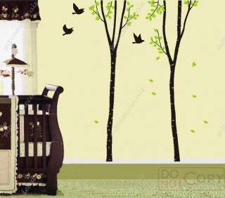 Nice Two Big Birch Tree(102) Removable vinyl Wall Art