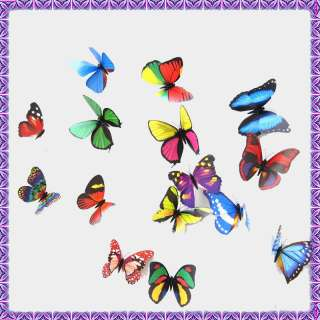Magnetic Fridge Magnet Mixed Colorful Butterfly New