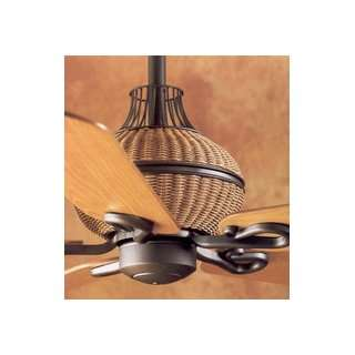 Hunter Fans 28402 Captiva Ceiling Fan Iron with Medium Pine / Light