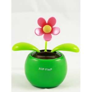Solar Powered Green Flip Flap with Swaying Flower Toy