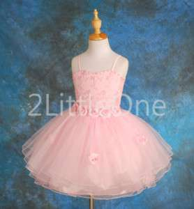 Wedding Flower Girl Pageant Holiday Party Dresses 2T 7