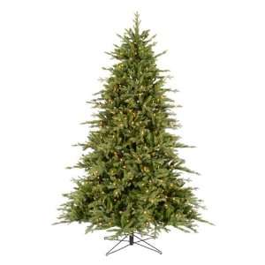 Cason Fraiser Fir Pre lit LED Christmas Tree