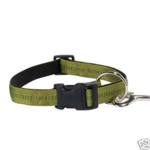 Zack & Zoey Padded Nylon Dog Collar OLIVE 3/8 x 6 10