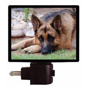 Dog Night Light   German Shepherd   LED NIGHT LIGHT